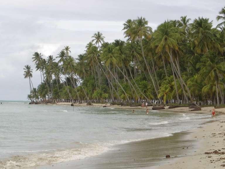 Foto: Sandra Belchiolina/Pernambuco. Praia dos Carneiros