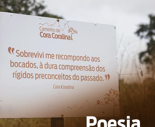 Placa no caminho - Arquivo Pessoal - Turismo, escritores e suas casas