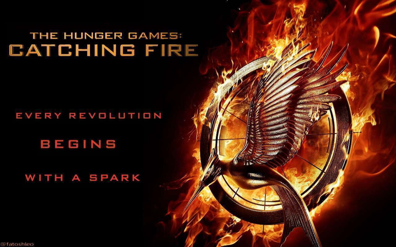HG Catching Fire poster